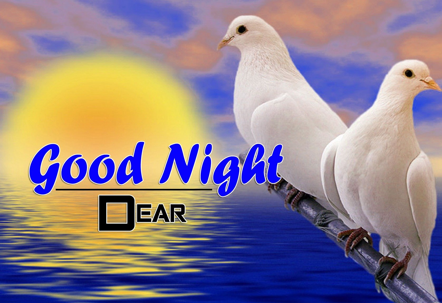 Free Good Night Wishes k Images Pics Downoad