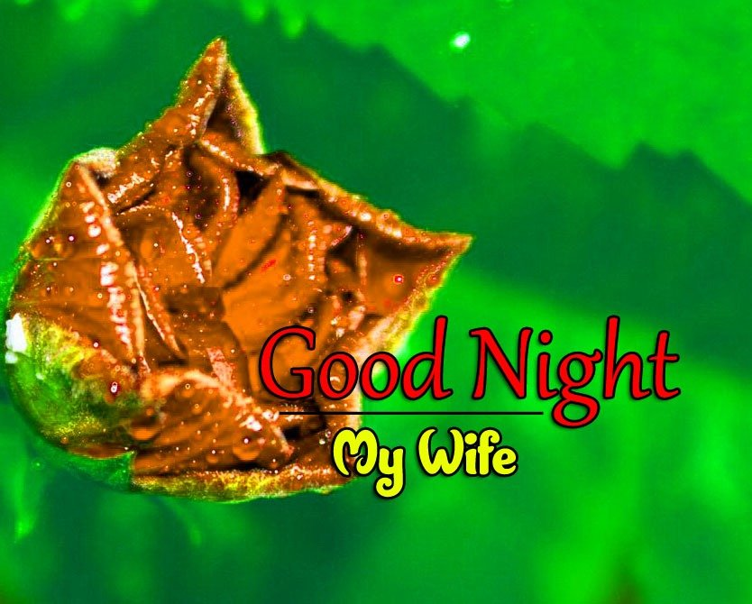 New Free Good Night Wishes k Images Pic Download
