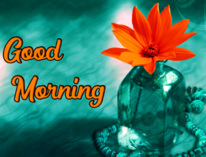 Good Morning Images Pics Download & Share