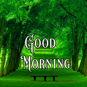 Good Morning Images Pics Free Download