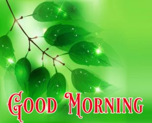Good Morning Images New Free