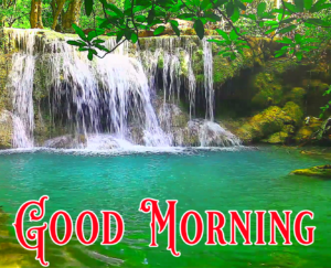 Nature Free Good Morning Images