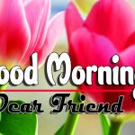 Latest Good Morning Wishes Pics Images HD