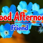 139+ Top Good Afternoon Images Photo Pics Wallpaper Free Download