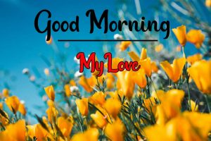 good morning pics for my love