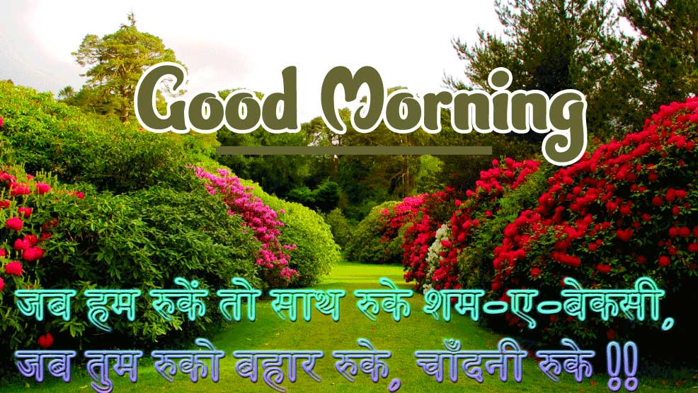 Latest Good Morning Images Photo for Facebook
