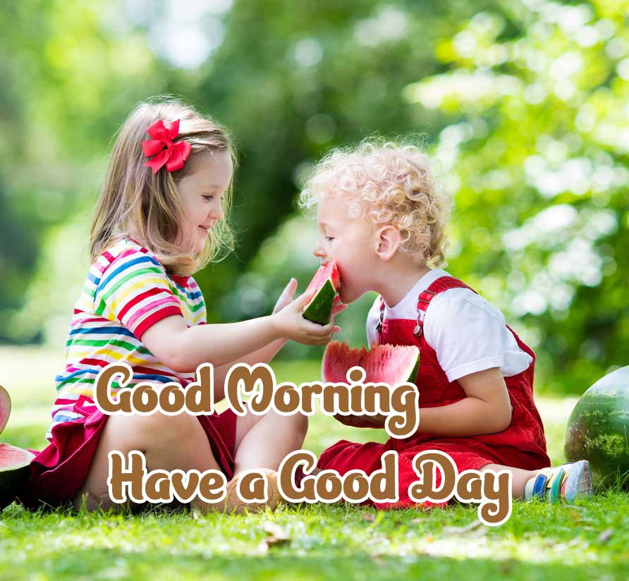 Latest Good Morning Images Wallpaper Pics Download