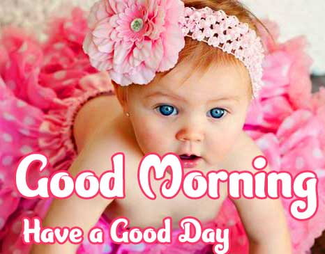 Latest Good Morning Images Pics pictures Free Download