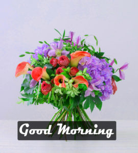 New 1235+ HD Beautiful Good Morning Images HD Download
